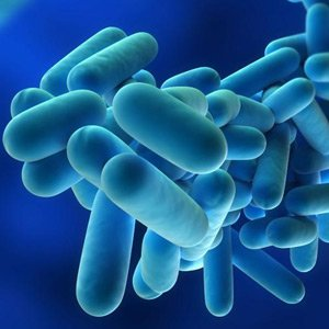 Legionella testing by ELP Scientific